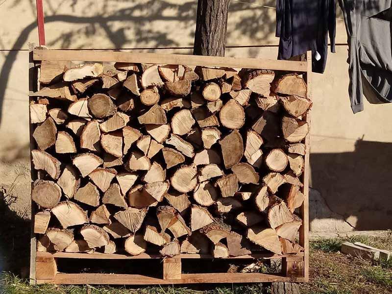 drva za ogrev bor